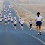 InterRisk zaprasza na VII Półmaraton Ziemi Puckiej w najbliższą sobotę 25 lipca