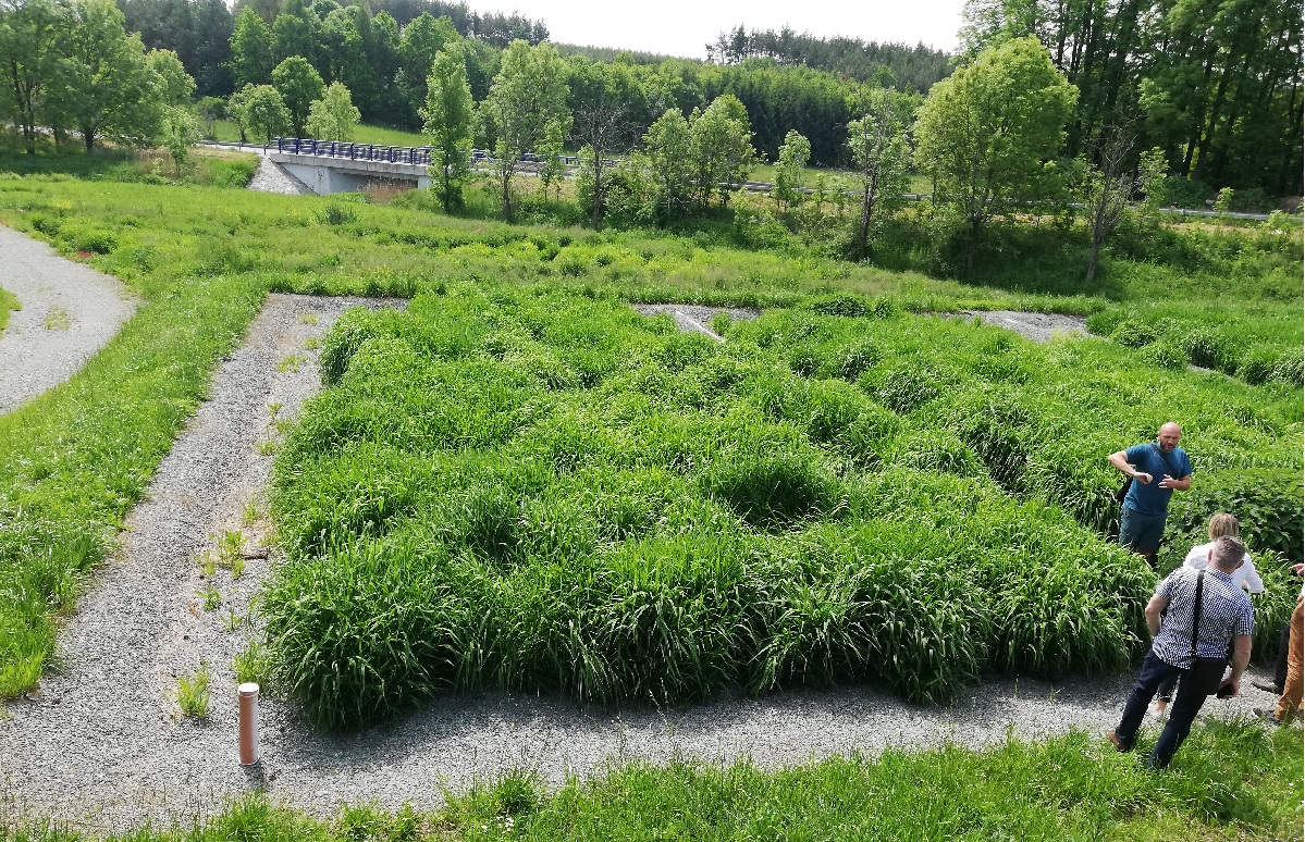 Naukowcy z UW przedstawili ekonomiczną i ekologiczną alternatywę dla gospodarki ściekowej na terenach wiejskich